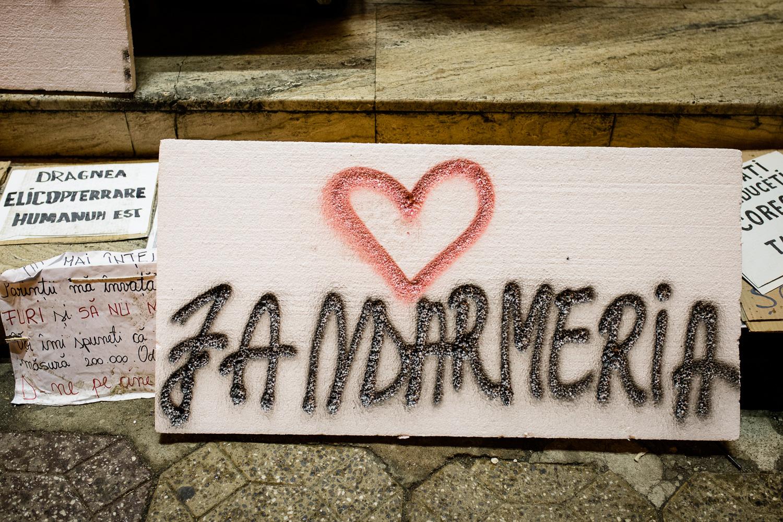 "Placard with ""Love Gendarmerie"" in Timisoara, Romania"